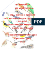 Aves Del Peru