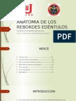 Anatomia de Los Rebordes Edéntulos