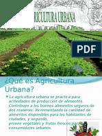 agriculturaurbanaleidis-