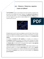 Telomero Telomerasa Limite de Hyflinck