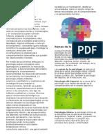 Psicología, Ramas y Tipos de Psicologia