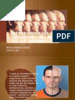 Alteraciones Del Ritmo Circadiano Del Adulto Mayor