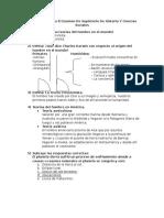 Cuestionario Para El Examen Supletorio de Historia y Ciencias Sociales