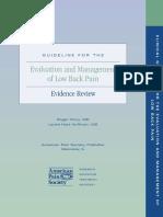 Evaluation Management Lowback Pain