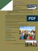 BIENVENIDOS A PUNO.pdf