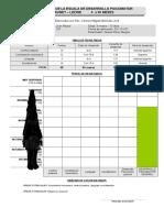 Protocolo e Informe Brunet Lezine