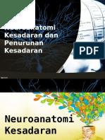 Anatomi Dan Penurunan Kesadaran