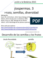 Angiospermas Clase