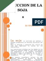 Proyecto Soja Quimili Vilelas Sgo Del Estero