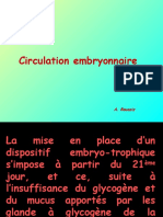 Circulation Embryonnaire