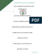 Informe Botanica 4 Anatomia de La Raiz