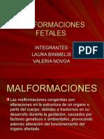 MALFORMACIONES FETALES