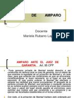 Accion de Amparo.2012