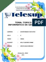 TELESUP -Topico Informatico de Gestion