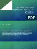 Funcionalidad de Un Aislamiento Proteico de La Quinua