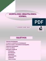 MORFOLOGIA HEMATOPOIESIS 2016 FINAL.pdf