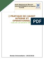 Audit Interne Service Commercial VMM