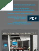 Presentación SID CD TSE (1)