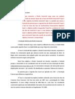 Comercial - Iacomini(1).pdf
