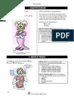 Endocrinologia