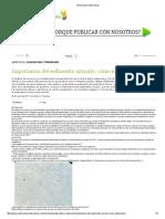 Selecciones Veterinarias urianaliis