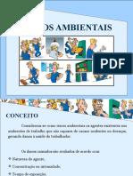 Riscos Ambientais Higiene -Mauricio