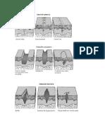 Imagenes Clinopatologia