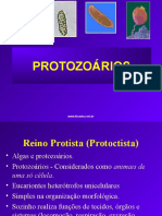5_Protozoarios