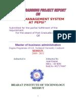 44524455 Cash Management System Pepsi