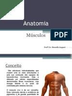 Anatomia- M+¦sculo.pptx