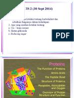 Protein1 Edit