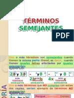 TÉRMINOS SEMEJANTES P1.