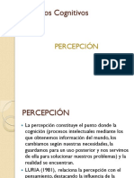 6.- Percepcion.pdf