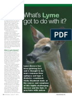 What's Lyme got to do with it?