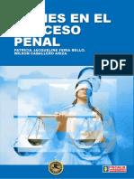 Bienes en el Proceso Penal