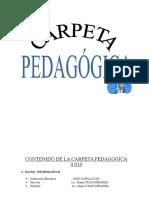 Carpeta Pedagogica m.u.p.