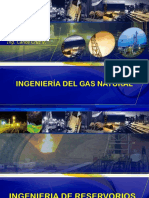 Ingenieria Del Gas Natural