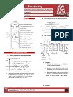 Respiratory Chain & Oxidative Phosporylation; Kreb's Cycle - Menorca
