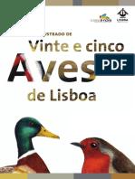 Guia Das Aves