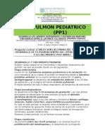 El Pulmon Pediatrico - Pp1 - Taller de Aula
