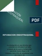 Intuba endotraqueall