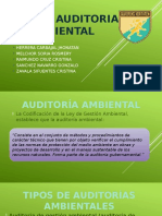Guía de Auditoria Ambiental