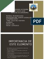Ciclo Del Fosforo Microbiologia