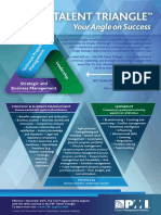 Talent Triangle Flyer