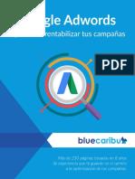 Libro Google Adwords Aprende a Rentabilidad Tus Campañas - BlueCaribu