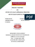 Study on Loan Apprasa Processl Pnb