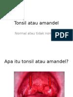 Tonsil Atau Amandel