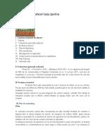 Modele Planuri de Afaceri (Bază sportivă)