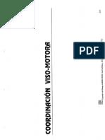 2 Coordinacion Viso-motora (enfocate)