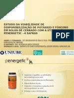 1-Disponibilização de Potássio e Fósforo Em Solos de Cerrado Com a Utilização Do Penergetic – 4 Safras